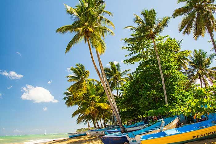 louisa aparthotel dominicana barcas