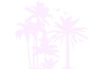 louisa aparthotel dominicana silueta palmeras