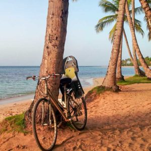 louisa aparthotel dominicana bicicleta